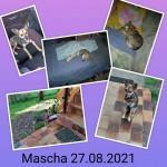 Mascha6